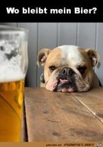 Bier-her.jpg auf www.funpot.net