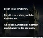 Brexit-ist-wie-Pubertät.jpg auf www.funpot.net