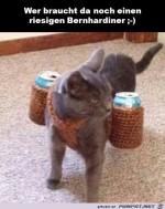Tierischer-Getränkeservice.jpg auf www.funpot.net