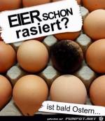 Eier-schon-rasiert.png auf www.funpot.net