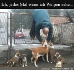 Wenn-ich-Welpen-sehe.jpg auf www.funpot.net