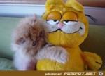 image014.jpg auf www.funpot.net