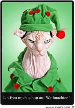 Ich-freu-mich-schon-auf-Weihnachten.jpg auf www.funpot.net