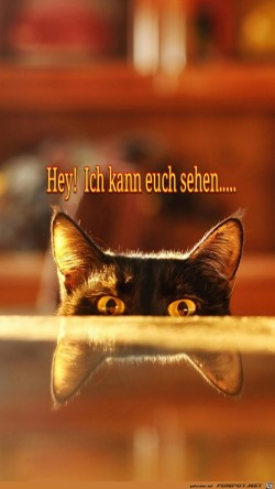 Hey!-Ich-kann-euch-sehen.....jpg auf www.funpot.net