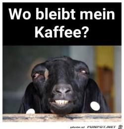 Wo-bleibt-mein-Kaffee?.jpg auf www.funpot.net