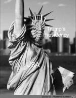 Trumps-Präsidentschaft-für-die-USA.jpg auf www.funpot.net