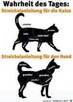 Anleitungen.jpg auf www.funpot.net