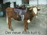 Der-neue-Audi.png auf www.funpot.net