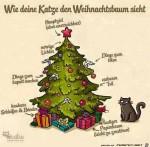Katze-und-Weihnachtsbaum.jpg auf www.funpot.net