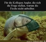 Die-Fische-beißen-nicht-an.jpg auf www.funpot.net