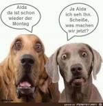 Alda-da-ist-schon-wieder-der-Montag.jpg auf www.funpot.net