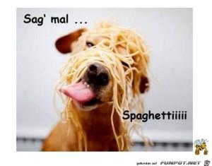 Spaghetti.jpg auf www.funpot.net