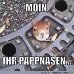 Guten-Morgen-ihr-Pappnasen.jpg auf www.funpot.net