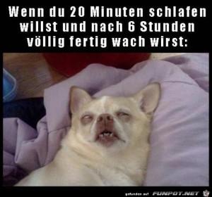 Wenn-du-kurz-schlafen-willst.jpg auf www.funpot.net