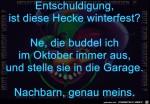 Ist-diese-Hecke-winterfest?.jpg auf www.funpot.net