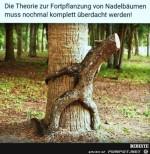 die-Theorie-der-Fortpflanzung.......jpg auf www.funpot.net