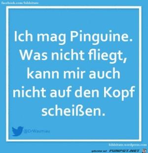 Ich-mag-Pinguine.jpg auf www.funpot.net