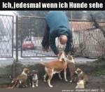 Wenn-ich-Hunde-sehe.jpg auf www.funpot.net