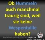 Hummeln-sind-traurig.jpg auf www.funpot.net