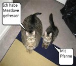 Mit-Pfanne-gefressen.jpg auf www.funpot.net