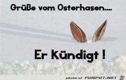 Der-Osterhase.jpg auf www.funpot.net