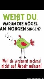 Die-Vögel-singen.jpg auf www.funpot.net