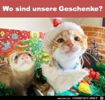 Wo-sind-die-Geschenke?.jpg auf www.funpot.net