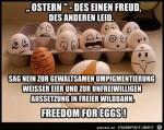 Freiheit-für-Eier.jpg auf www.funpot.net