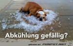 Abkühlung-erforderlich.jpg auf www.funpot.net