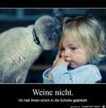 Weine-nicht.jpg auf www.funpot.net