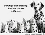 beruhige-Dich-Liebling.jpg auf www.funpot.net