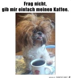 Frag-nicht---ich-brauche-nur-Kaffee.jpg auf www.funpot.net