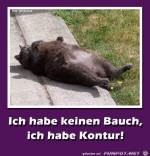 Ich-habe-keinen-Bauch-.jpg auf www.funpot.net