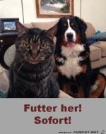 Futter-her.png auf www.funpot.net