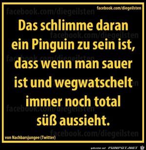 diegeilsten-Pinguin.jpg auf www.funpot.net