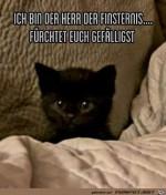 Herr-der-Finsternis.jpg auf www.funpot.net