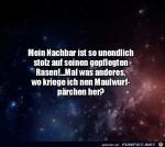 Wo-bekommt-man-ein-Maulwurfpärchen?.jpg auf www.funpot.net