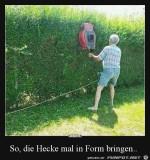 mal-kurz-die-Hecke-schneiden.jpg auf www.funpot.net