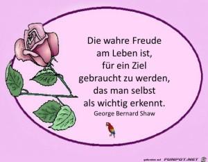 Die-wahre-Freude-am-Leben.jpg auf www.funpot.net