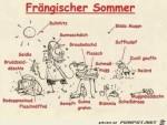 Sommer-im-Fränkischen.jpg auf www.funpot.net