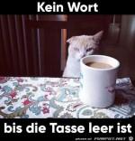 Kein-Wort-bis-der-Kaffee-leer-ist.jpg auf www.funpot.net