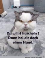 hol-dir-doch-einen-Hund.jpg auf www.funpot.net