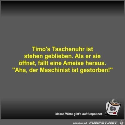 Timo's-Taschenuhr-ist-stehen-geblieben.jpg von Fossy