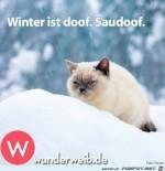 Winter-ist-doof.jpg auf www.funpot.net