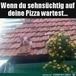 Wann-kommt-die-Pizza.jpg auf www.funpot.net