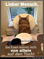 Lieber-Mensch.png auf www.funpot.net