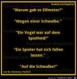 diegeilsten-Schwalbe.png auf www.funpot.net