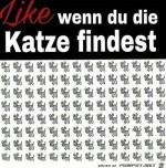 Finde-die-Katze.jpg auf www.funpot.net