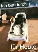 Die-Wahnsinns-Hitze.jpg auf www.funpot.net