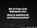 Mal-eine-Frage-an-die-Mathegenies.jpg auf www.funpot.net